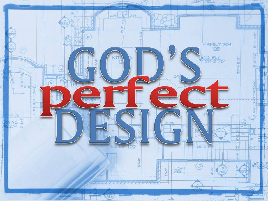 Gods-Perfect-Design